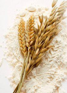 さかえやの小麦